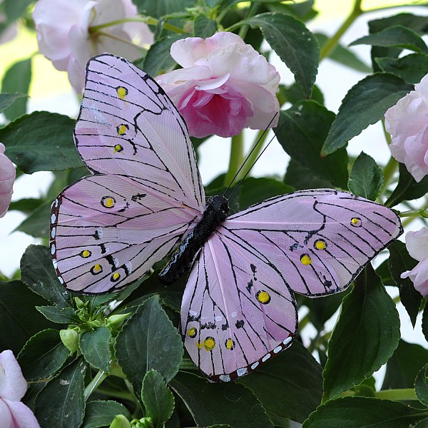 Fjäril Stick Oriental - Rosa
