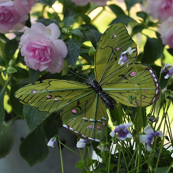 Fjäril Stick Oriental - Grön