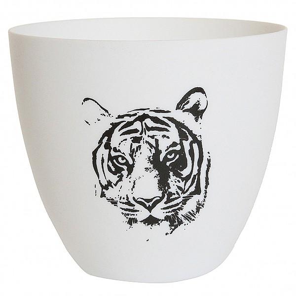 Ljuskopp/Ljuslykta Tiger