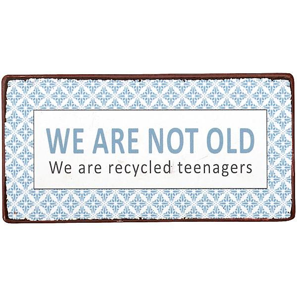 Magnet/Kylskåpsmagnet Recycled teenagers