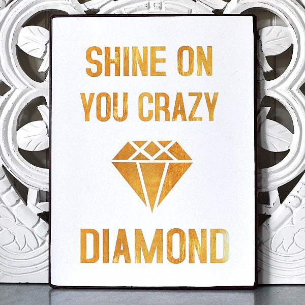 Plåtskylt Shine on you crazy diamond