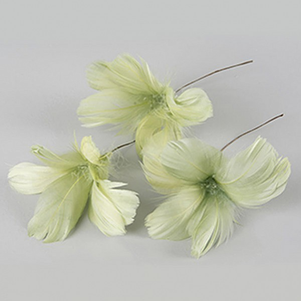 Påskfjädrar/Fjädrar Blom Lime - 12 st