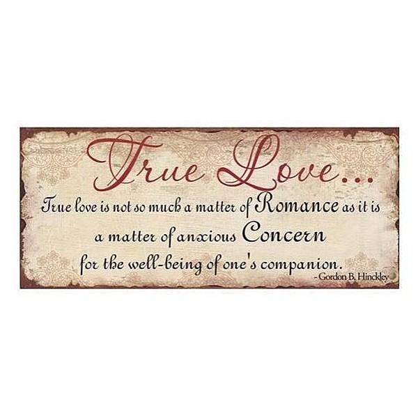Plåtskylt True Love