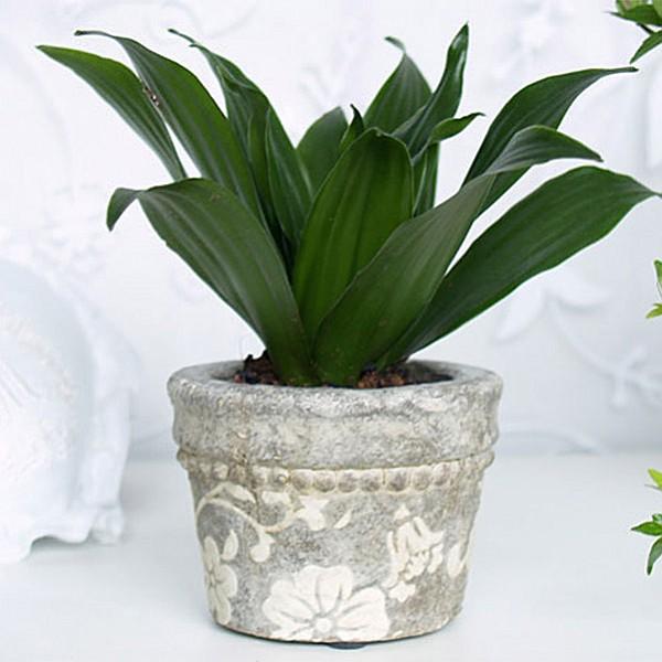 Kruka Grey Antique Flower