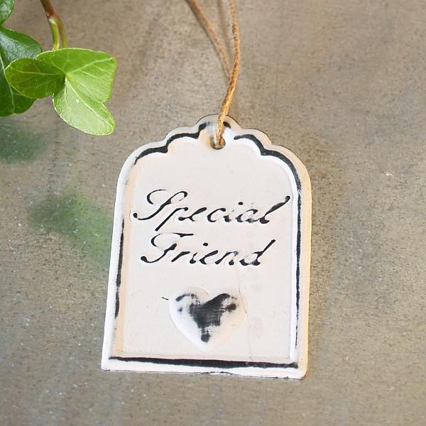 Tag Special Friend 6 x 4 cm - Vit