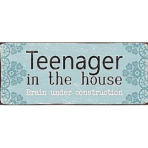 Tin Sign Teenager in the house