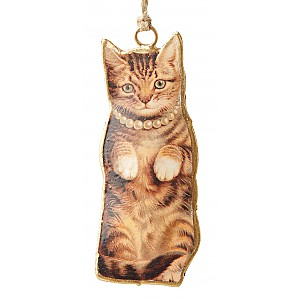 Cat with a necklace