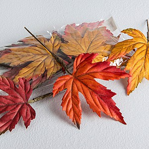 Autumn leaves 3 colors
