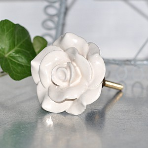 Porcelain Knob Rose