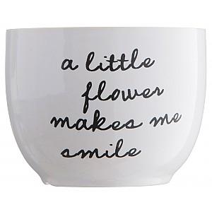 Blomkruka A little flower makes me smile